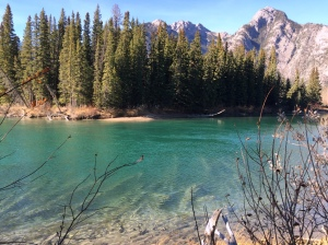 Bow River - Just look at how green the water is.